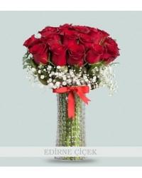 Kızıl Rüya 20 Kırmızı Güller