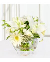 Beyazın Görkemi Gerbera, Lilyum ve Güller
